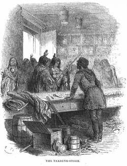 french fur trade essay The french fur trade beginning in the mid sixteenth century, french explorers were able to establish a powerful and lasting presence in what is now the northern.